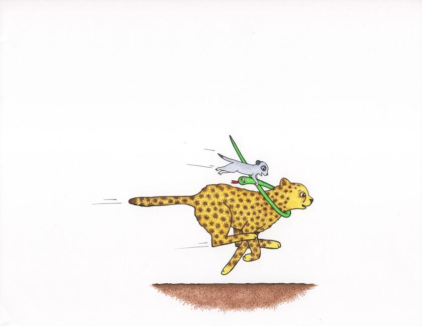 Cheetah, Snake & Meerkat from Run, Cheetah, Run