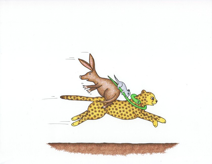 Cheetah, Snake, Meerkat & Aardvark from Run, Cheetah, Run