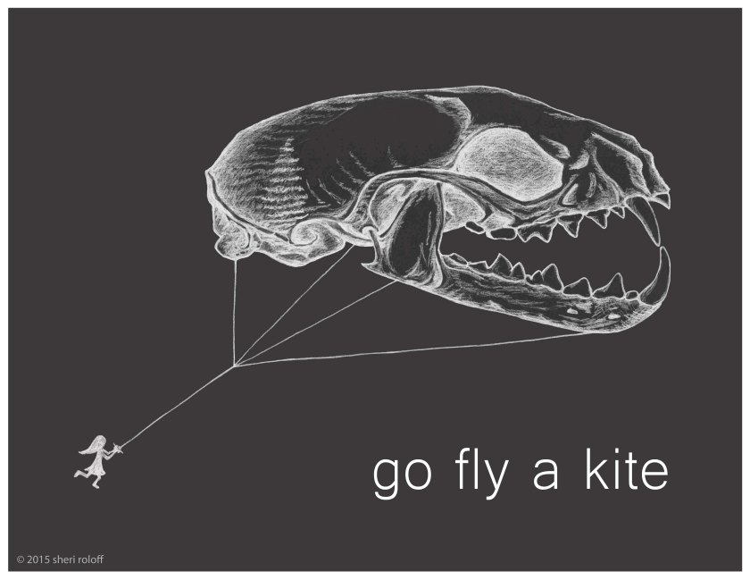 Go Fly a Kite by Sheri Roloff
