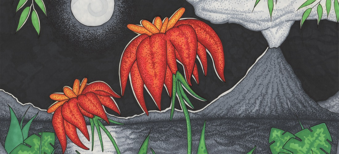 Volcano Flowers by Sheri Roloff