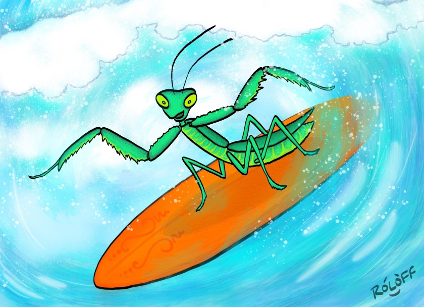 Surfing Mantis by Sheri Roloff